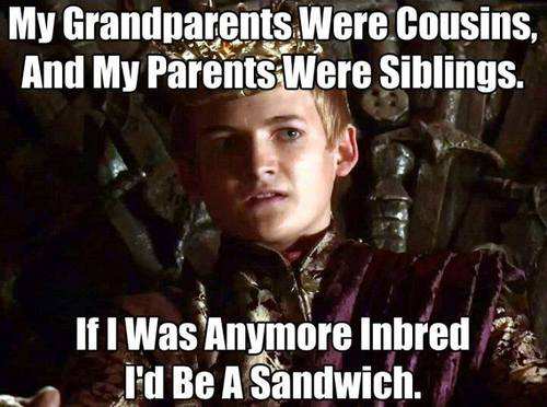 game-of-thrones-joffrey-inbred-joffrey-cersi-jamie-lannister-meme-funny-meme-addictedtoeverything-ate